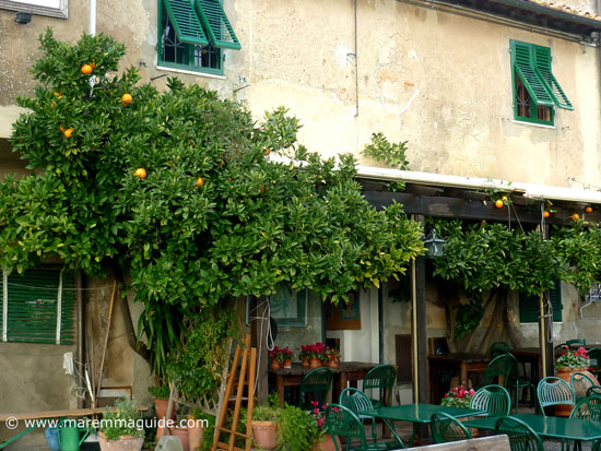Bolgheri restaurant Maremma Tuscany Italy