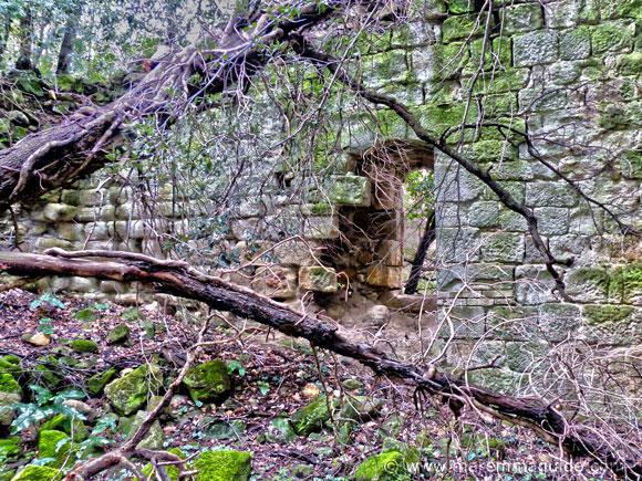 Ruin detail of the Abbazia di San Salvatore di Giugno, Roccastrada.
