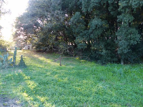 The Agriturismo San Guglielmo property within which the remains of the Abbazia di San Salvatore di Giugno are located.