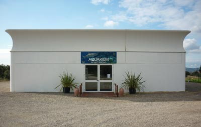 Aquarium Mondo Marino, Valpiana, Massa Marittima, Maremma, Tuscany