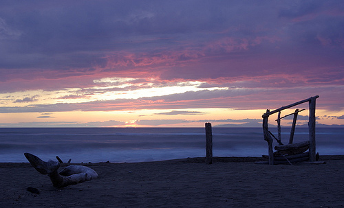 Beach Sunset Photos: purple sunset at Principina a Mare, Maremma Tuscany in July