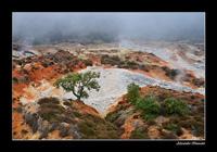 Geothermal landscape Parco naturalistico delle Biancane at Monterotondo Marittimo