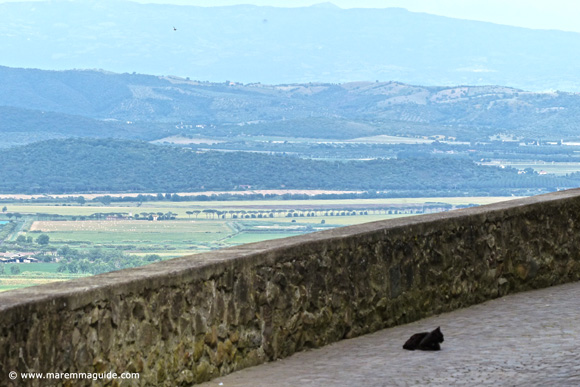 Panoramic view from Buriano with cat!