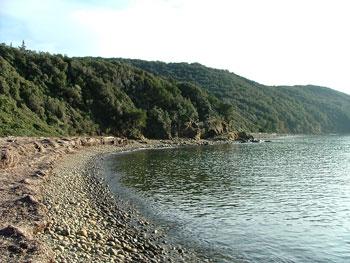 View of Cala Martina bays