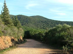 The Cala Martina access track