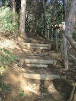Path down to Cala Martina