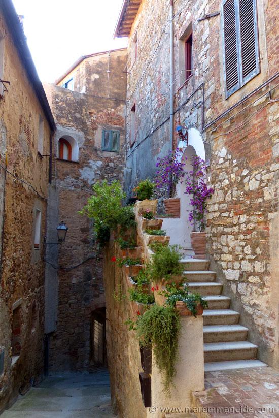 Campiglia Marittima Tuscany: tiny garden