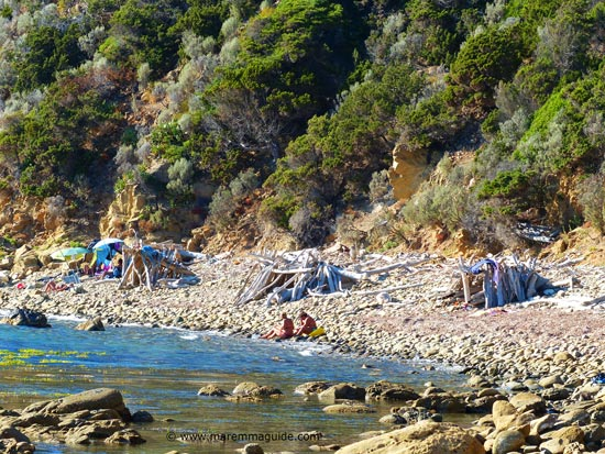 Camoing in Maremma: driftwood shelters in September