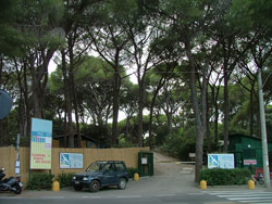 Camping Pineta del Golfo, Follonica: campsites on the beach in Tuscany in Maremma, Italy