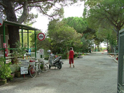 Camping Piper Follonica: Italian campsites on the beach in Tuscany in Maremma, Italy