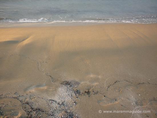 Capanna Civinini beach sands Tuscany Maremma