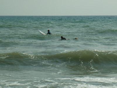 Surfing at Capezzolo Castiglione della Pescaia Maremma Tuscany September