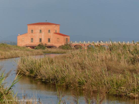 Casa Ximenes Diaccia Botrona Castiglione della Pescaia