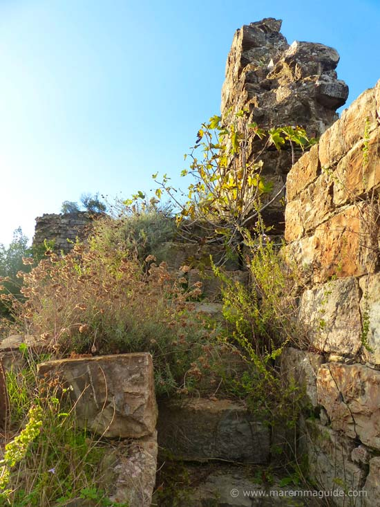Castel di Pietra stone stairwell: middle ages castle Tuscany