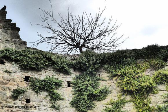 Buriano Castle in Tuscany