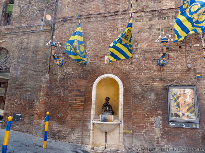 Contrada della Tartuca Siena.