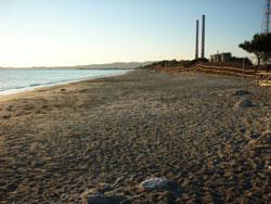 Dog Beach Parco Naturale della Sterpaia