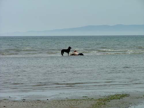 Maremma dog beaches Italy: Tuscany and Lazio