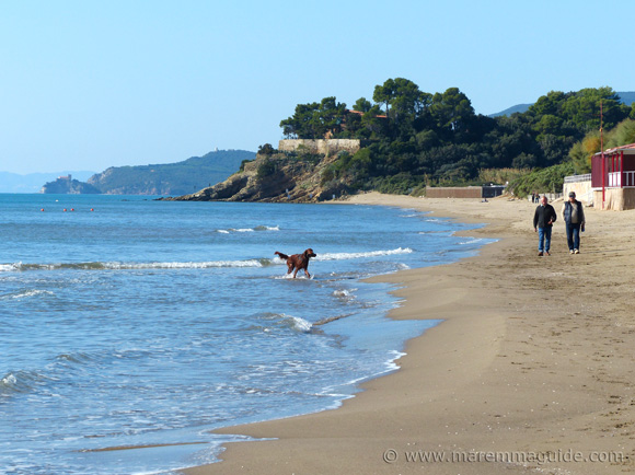 Dog friendly beach in Maremma Tuscany