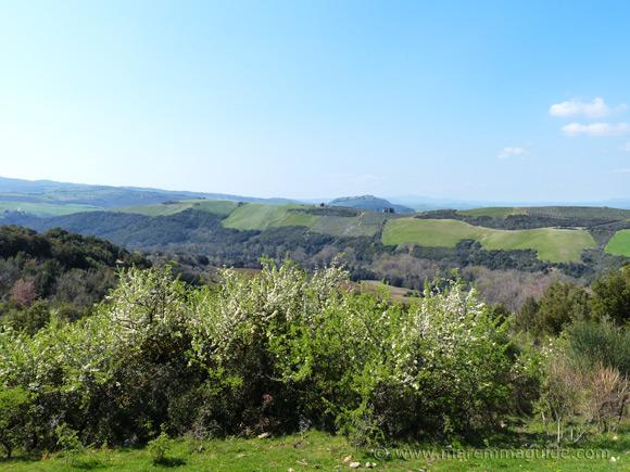 View to Montenero in Maremma Tuscany