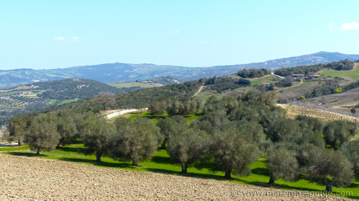 View to the Val d'Orcia