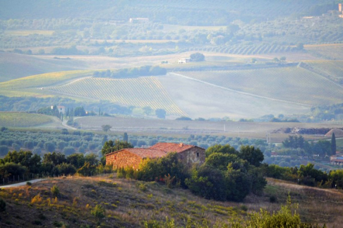 Old farmhouse renovation in Tuscany for sale with an incredible view. Near Montalcino and the Val d'Orcia.