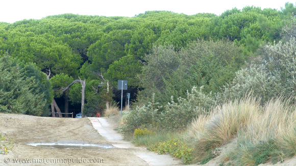 Fiumara beach access and woodland parking