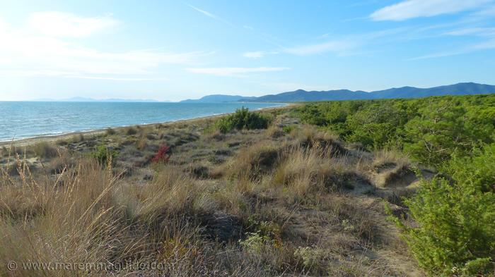 Fiumara beach: best beaches in Tuscany