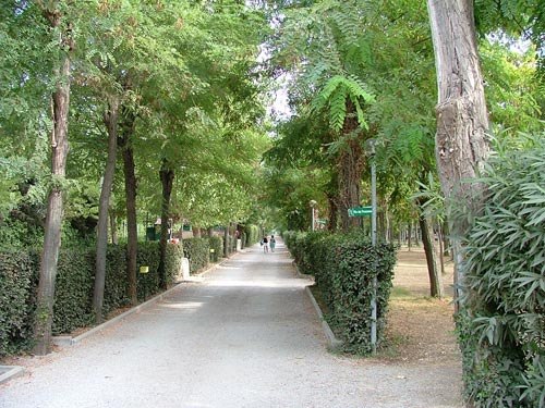 Follonica Campsites: Tuscany Campsites in Maremma, Italy