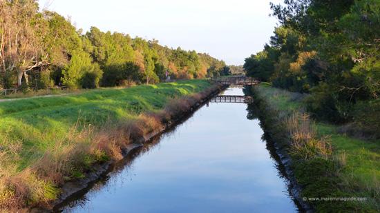 The canal Fosso Cervia in the Parco Nautrale della Sterpaia Maremma Tuscany