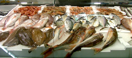 Fresh fish stall in Tuscany: Mercato Coperto Follonica