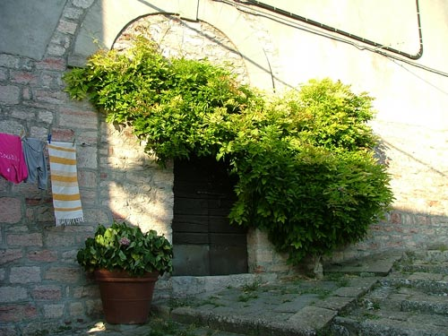 A doorway in Gerfalco, Maremma, Italy
