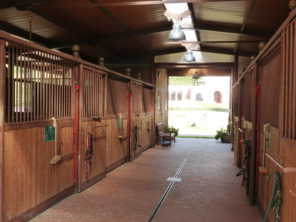 Horseback riding Tuscany stables