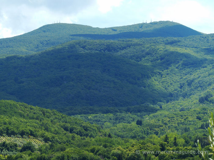 View of wooded hills
