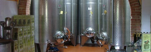 storing olive oil in a Frantoio in Maremma