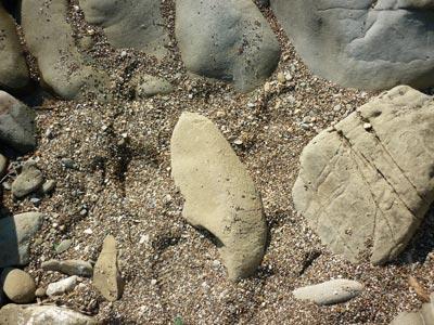 Il Pozzino spiaggia Baratti Piombino Maremma Toscana Italia