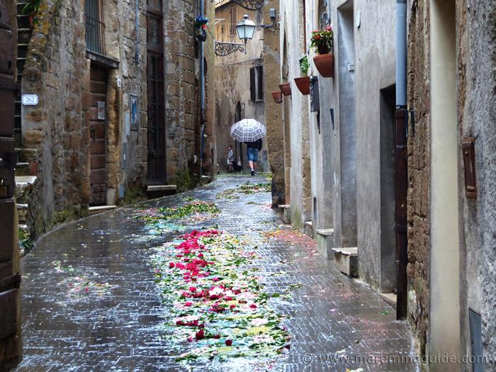 Pitiglaino Italy