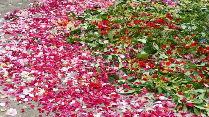Rose petal decoration for Corpus Christi
