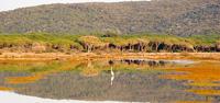 Maremma Nationa Park