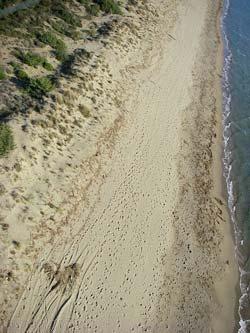 Le Marze beach, Marina di Grosseto Maremma Italy