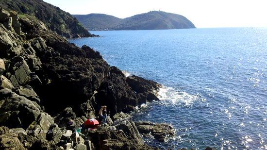 Sea fishing by line at Lo Stellino Maremma Tuscany
