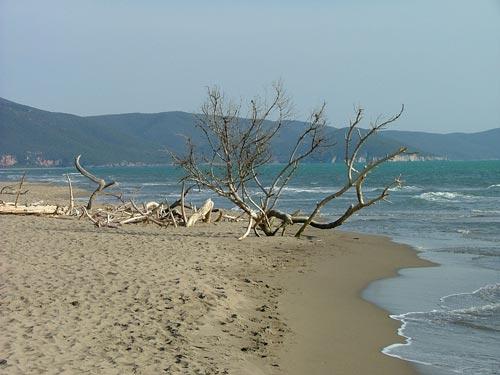 Maremma beaches, Tuscany Lazio Italy
