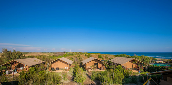 Maremma campsites on the beach Italy