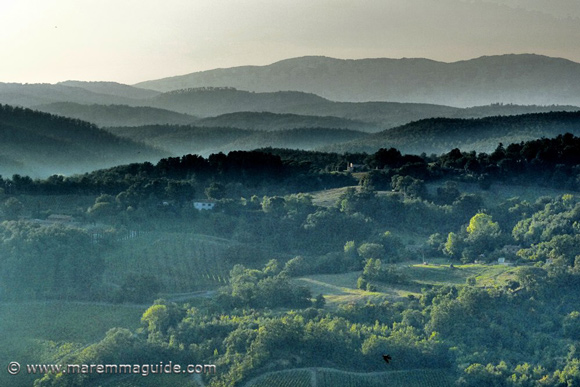 Maremma: the colline metallifere Tuscany on a September evening