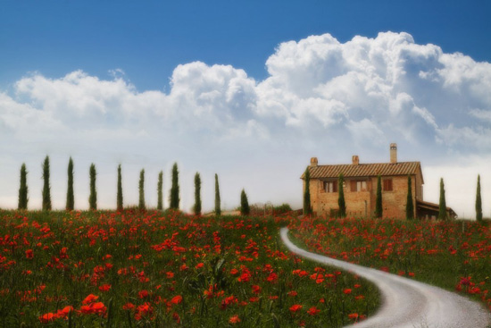 Maremma farmhouse with red poppies in Tuscany Italy