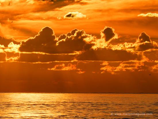Orange sunset in November, Maremma Tuscany