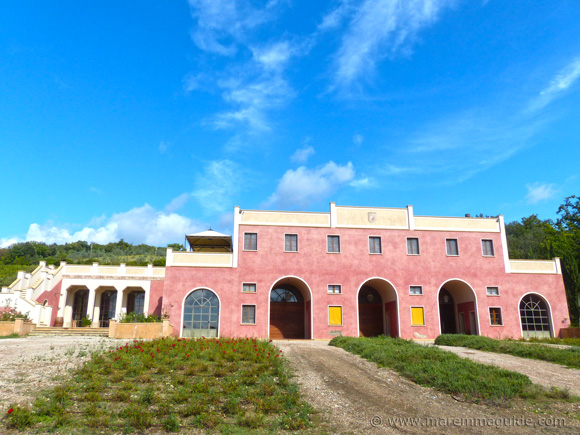 Maremma winery