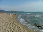 Marina di Alberese beach Grosseto Tuscany