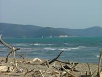 Marina di Alberese beach