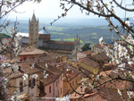 Massa Marittima Maremma Tuscany